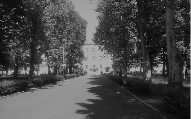 Quo vadis visoko obrazovanje - Sivilo Univerziteta u Banjoj Luci